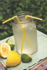 Lemon-Lime Sports Drink fishmama